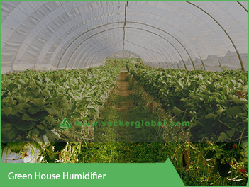 greenhouse-humidifier-in-saudi-arabia