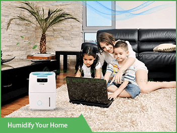humidify-your-home